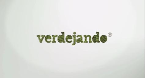 Globo volta com o projeto Verdejando em São Paulo